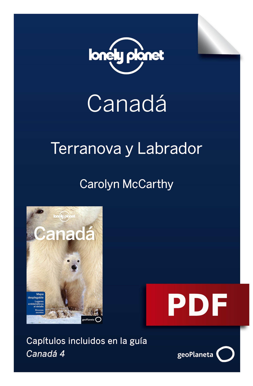 Terranova y Labrador