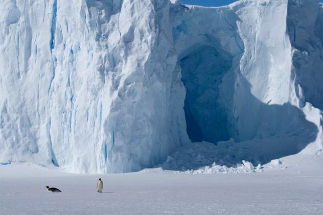Antártida © John Bradley / Lonely Planet
