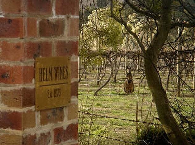 Helm Wines, Canberra, Australia © www.helmwines.com.au