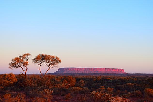 Lo mejor del Centro Rojo de Australia: Atila, conocido como 'Fool-uru'