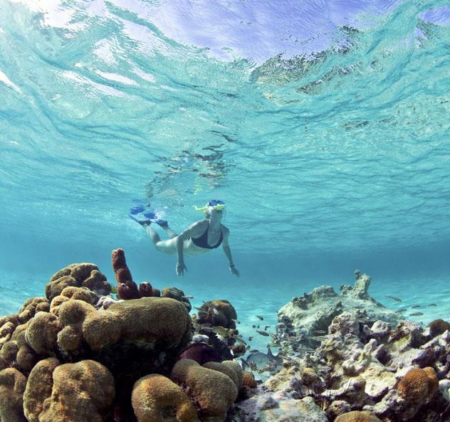 Buceo con tubo en arrecifes de Belice © Doug Berry / Getty Images
