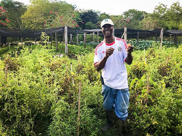 Belice y la cultura local: granja ecológica Copal