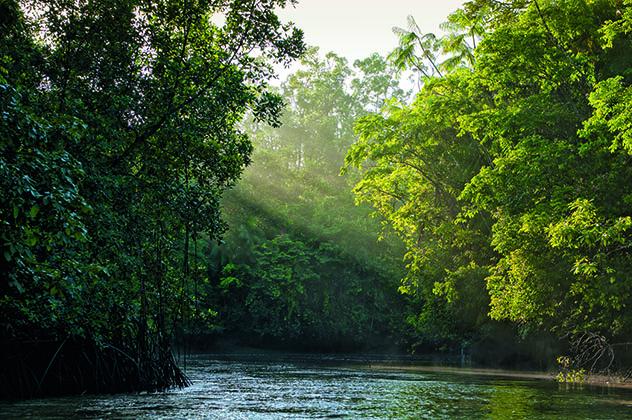 Amazonia brasileña, región Top 10 Best in Travel 2020