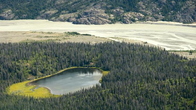 Canadá, río Alsek, Yukón, Parque Nacional Kluane © davidrh / Shutterstock