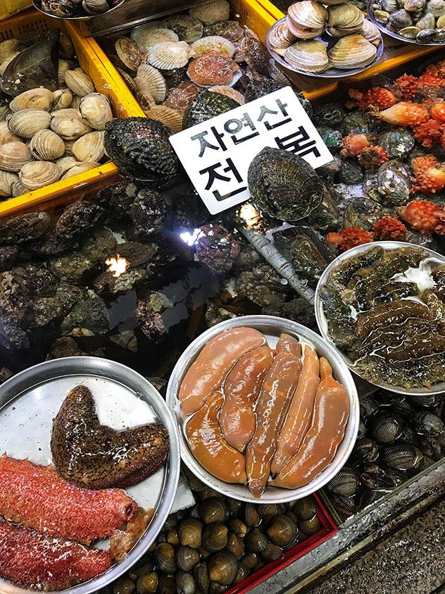 'Gaebul': un sencillo gusano de mar para un bocado atrevido, Busan, Corea del Sur © MaSovaida Morgan / Lonely Planet