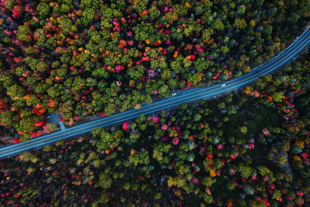 La carretera que atraviesa el Minnewaska State Park Preserve, las Catskills, costa este de EE UU © ricardocostaphotography / Getty Images