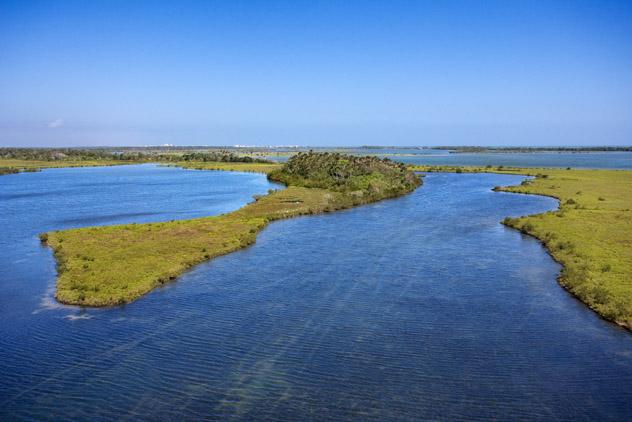 Se puede remar entre los manglares de Mosquito Lagoon, costa espacial de Florida, EE UU © Jupiterimages / Getty Images