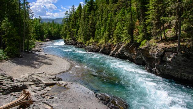 Estados Unidos, Middle Fork, río Salmon © Maks Ershov / Shutterstock