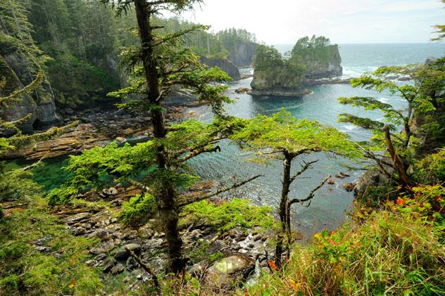 Olimpic National Park, Península Olímpica, Washington, costa del Pacífico, EE UU © 2009fotofriends / Shutterstock