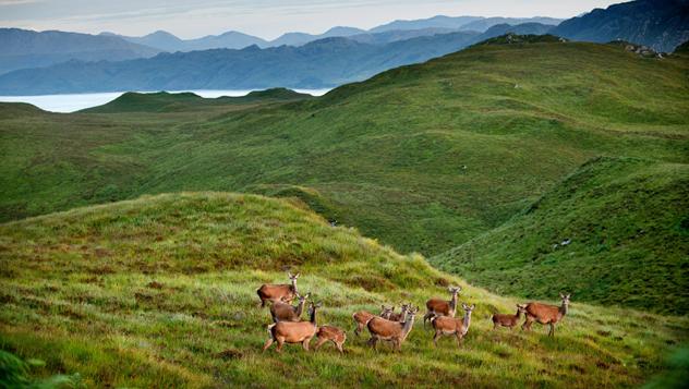 Escocia, Tierras Altas © Craig Easton / Lonely Planet