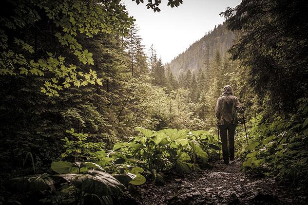 El Alto Tatra ofrece un terreno muy variado para explorar, Eslovaquia © Nejron Photo / Shutterstock
