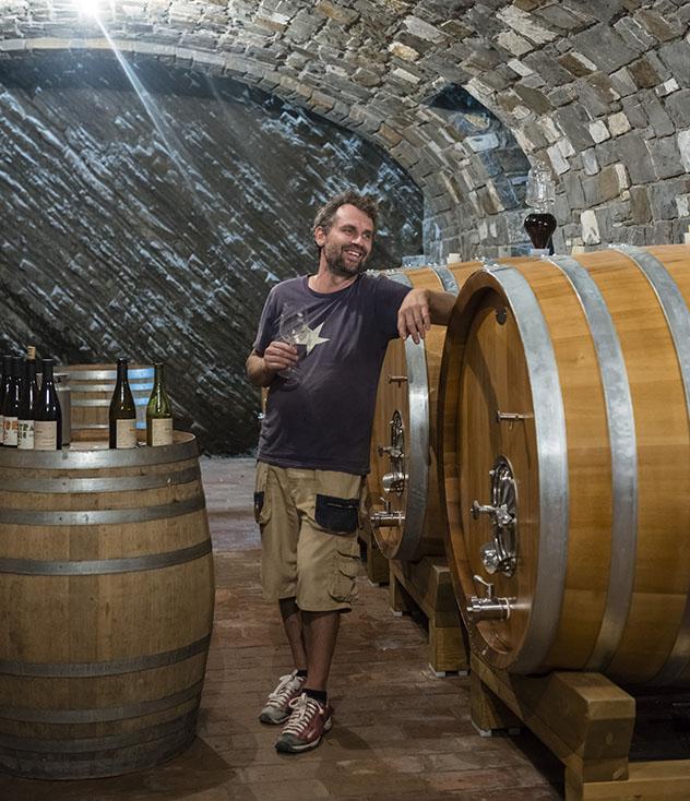 Eslovenia: cata de vinos en la finca Burja