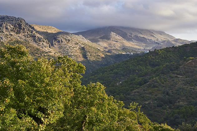 Valle del Genal y Serranía de Ronda, Málaga, Andalucía, España