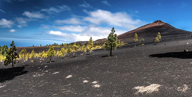 El Teide, Tenerife, Canarias, España © Kochneva Tetyana / Shutterstock