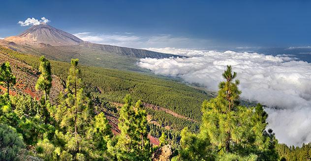 Valle de la Orotava, Tenerife, Canarias, España
