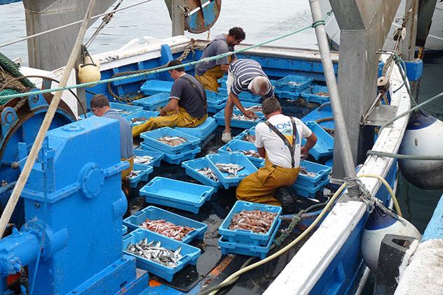 Pescadiores en el port de Palamós, ruta por la Costa Brava, Cataluña por carretera