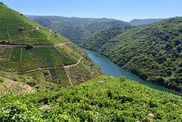 Valle del Sil y Ribeira Sacra, Lugo y Orense, Galicia, España