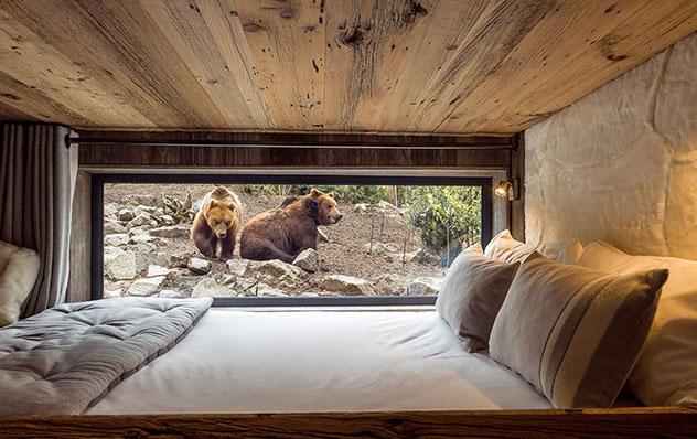 Hotel europeo: Safari Lodge, Francia