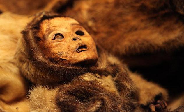 Momia de Qilakitsoq, Museo Nacional de Groenlandia © www.nka.gl