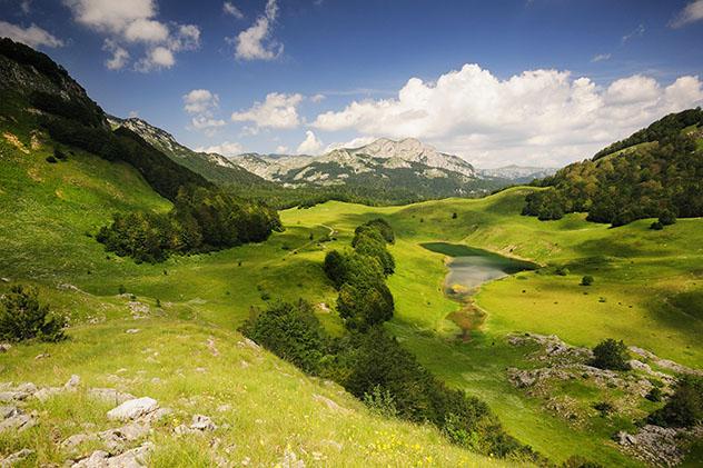El prístino bosque del Parque Nacional Sutjeska, Bosnia y Herzegovina © miamia / Shuttertock