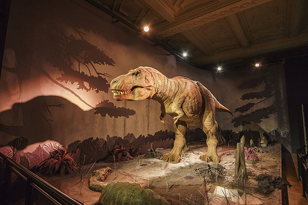 Espectacular dinosaurio, Museo de Historia Natural, Londres