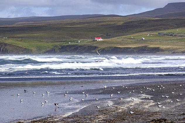Playas y acantilados de la península de Tjörnes, Arctic Coast Way, Islandia © photolike / Shutterstock