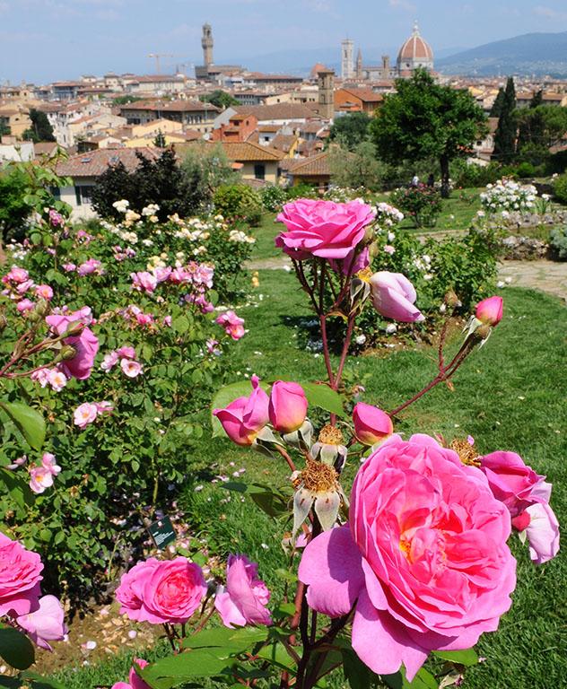 Giardino delle rose, Florencia, Toscana, Italia © Dan74 / Shutterstock