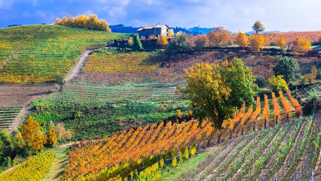 Italia, Piamonte © leoks / Shutterstock