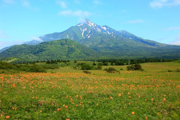 Parque Nacional Rishiri-Rebun-Sarobetsu, Hokkaido, Japón © Seigo Yamamura Aflo / Getty Images