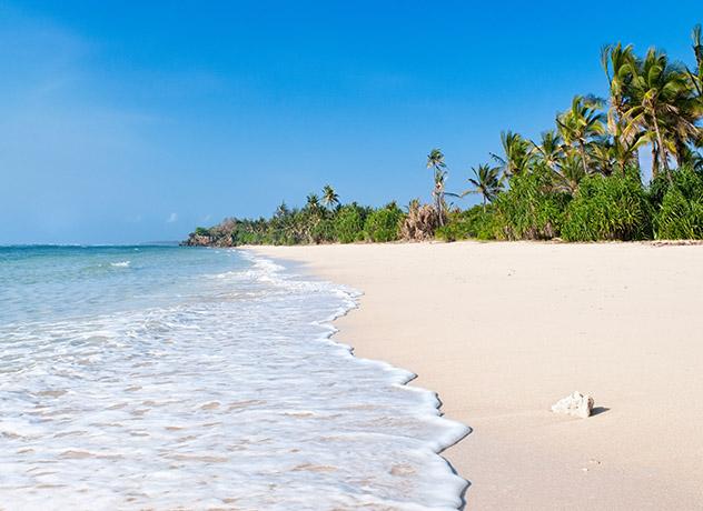 Msambweni, costa Índico, Kenia © George Clerk 176251/ Getty Images