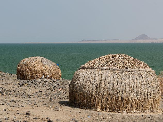 Experiencia salvaje en África: mar de Jade en Kenia