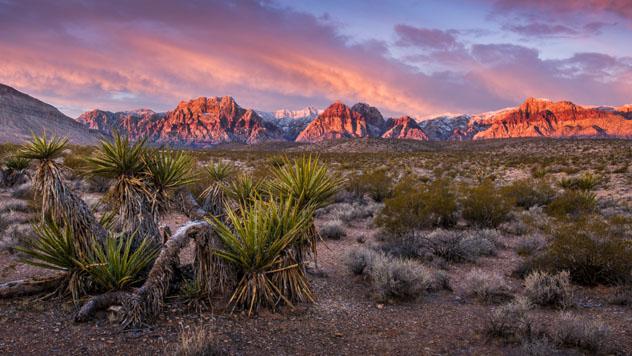 Red Canyon Rock, Las Vegas, EE UU © William Ducklow / Shutterstock