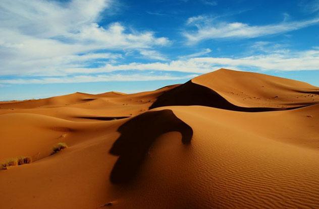 Camelladas, un libro para conocer y sentir el desierto