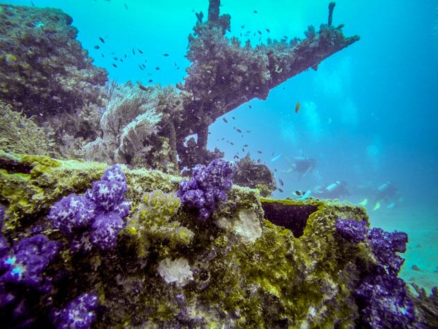 Isla Pulau Tioman, Malasia © aksenovden / Shutterstock