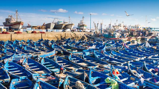Un astillero lleno de barcos de pesca azules en Esauira © Matej Kastelic / 500px