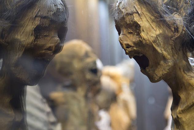 Momias del Museo de las Momias de Guanajuato, México © _ww.momiasdeguanajuato.gob.mx