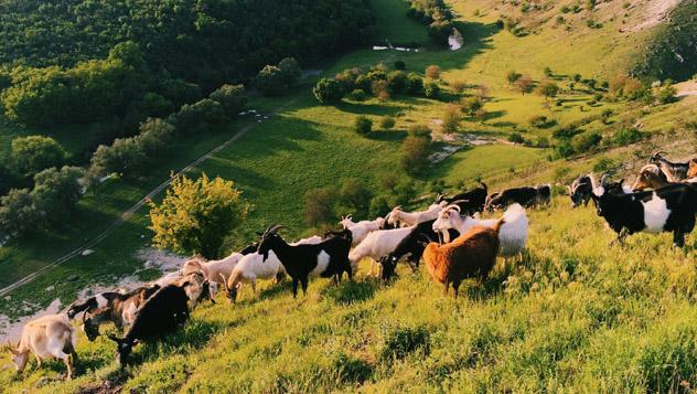 Butuceni, Parque Nacional Viejo Orhei, Moldavia © Alexander Spatari / Getty Images