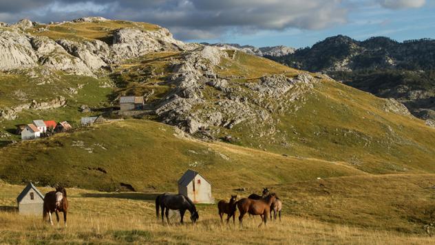 Montenegro rural © Stefan Rohlaender_500px