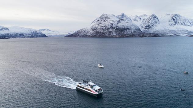 Crucero, Noruega © andrei Andritcu / Shutterstock