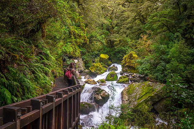 Milford Track, Nueva Zelanda © Puripat Lertpunyaroj / Shutterstock