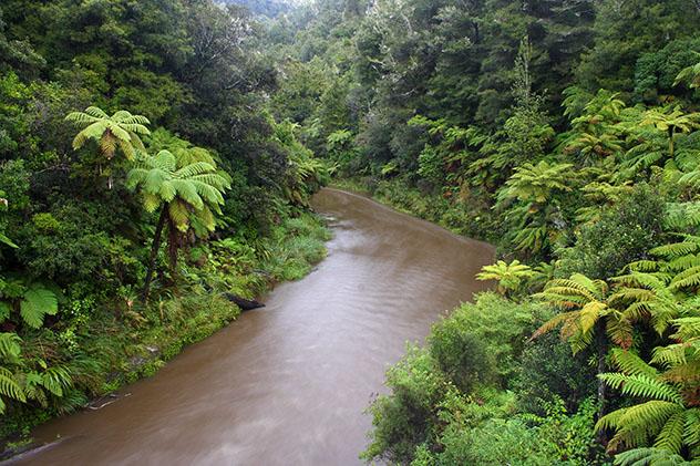 Río Whanganui, Nueva Zelanda © Sasapee / Shutterstock