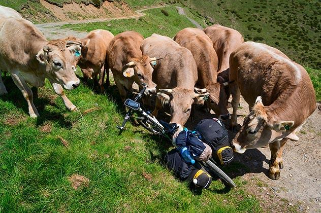 Ciclismo de montaña en la Transpirenaica en buena compañía© svsumin / Shutterstock