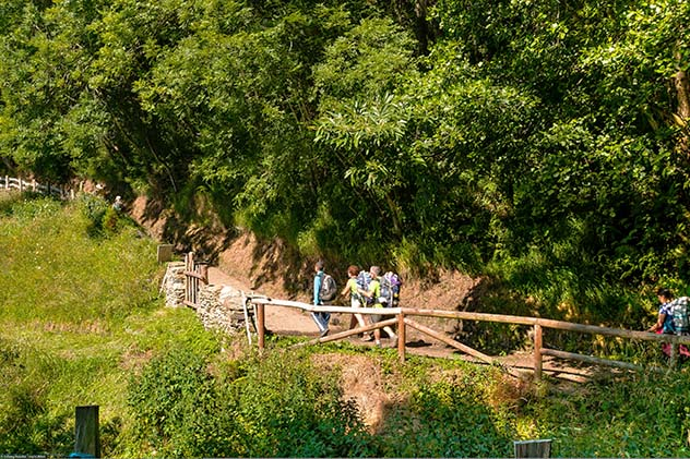 Peregrinos en las proximidades del Regueiro del Robleu, en el Camino Primitivo