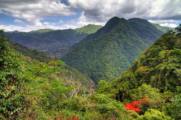 Bosque Nacional El Yunque, Puerto Rico © Dennis van de Water / Shutterstock