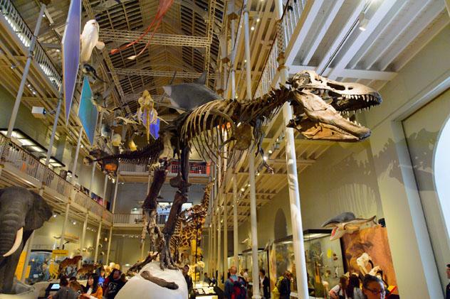 El National Museum está lleno de tesoros fascinantes, Edimburgo, Escocia, Reino Unido © Anton Ivanov / Shutterstock