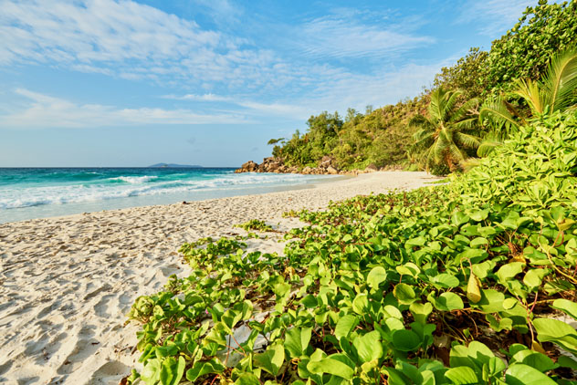 Playa Anse Gorgette, isla Praslin, Seychelles © LRPhotographies / Shutterstock