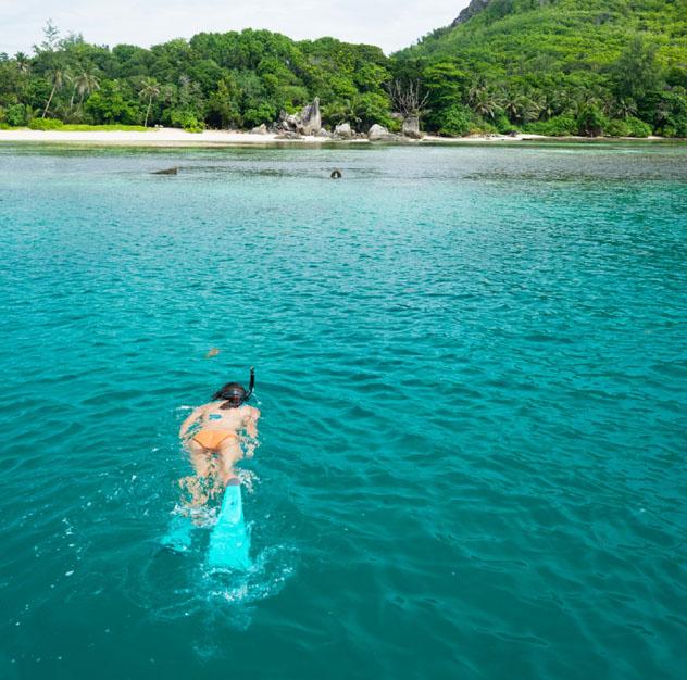 'Snorkel' en Seychelles © Justin Foulkes / Lonely Planet