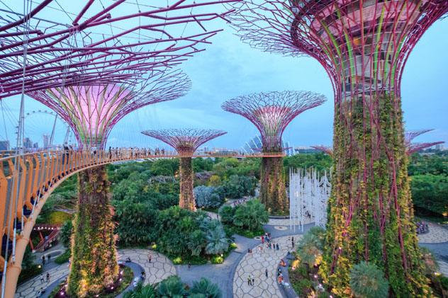 El místico Jardines de la Bahía es uno de los puntos de interés de Singapur ideales para visitar en soledad © FuuTaMin / Shutterstock