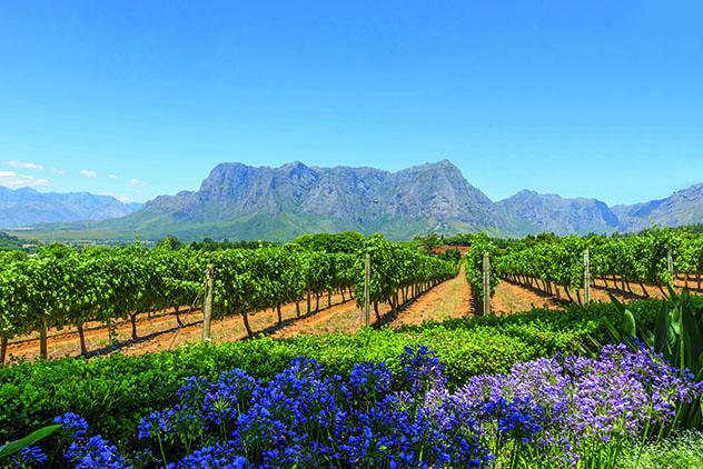 Cape Winelands, Sudáfrica, destino calidad-precio Top 8 Best in Travel 2020