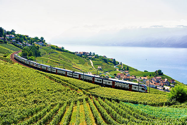 Trenes y rutas excursionistas atraviesan los pintorescos viñedos de Lavaux, Vevey, Suiza © Roman Babakin / Shutterstock